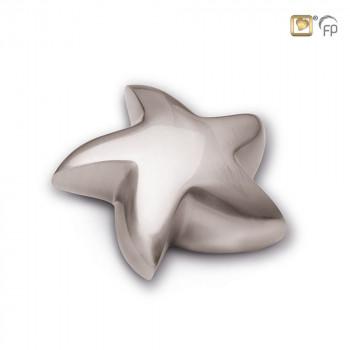 mini-ster-urn-zilver-kleur-mat_LU-K-623_LoveUrns_623