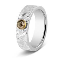 Zilver-gouden ring met ronde ruimte en lijn accent