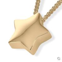 Ashanger stervorm glanzend-AH054-AH079