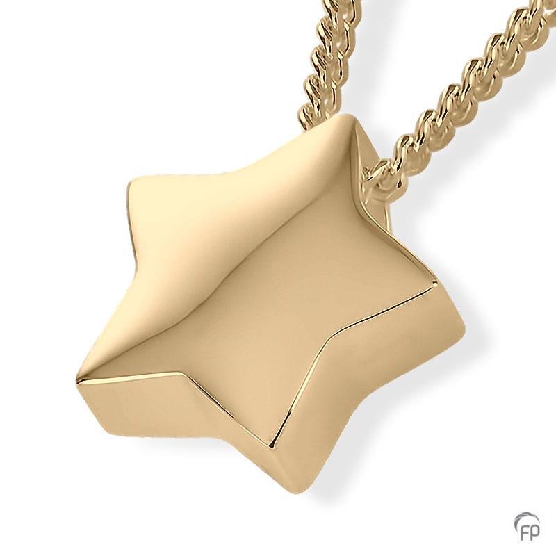 geelgouden-ashanger-ster_fp-ah-054-goud_funeral-products_675