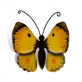 vlinder-mini-urn-luzerne-geel-zwart-bovenzijde_nf-4063