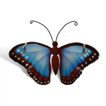 vlinder-mini-urn-morpho-blauw-rood-bovenzijde_nf-4053