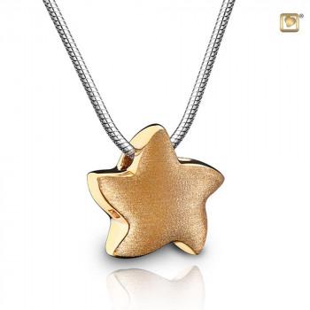 zilveren-goud-verguld-ster-ashanger-collier_phs-007_funeral-products_treasure_3032