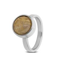 Stalen ring, asruimte, rutielkwarts, 4 varianten