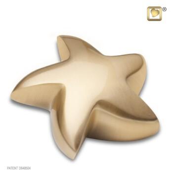 goudkleurig-geborstelde-mini-ster-urn-star-brushed-gold_lu-k-620