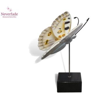 vlinder-mini-urn-apollovlinder-wit-zwart-geel-zijkant-met-blokje_nf-4062_memento-aan-jou