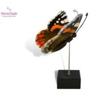 Houten mini-urn vlinder op granieten blokje, Atalanta
