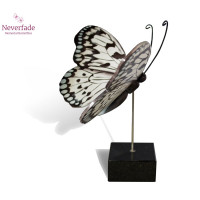 Houten mini-urn vlinder op granieten blokje, Idea Leuconoe