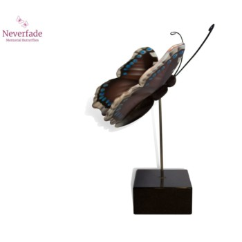 vlinder-mini-urn-koningsmantel-bruin-blauw-wit-zwart-zijkant-met-blokje_nf-4069_memento-aan-jou