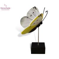 Houten mini-urn vlinder op granieten blokje, Koolwitje