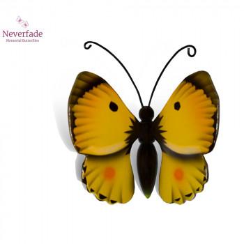 vlinder-mini-urn-luzerne-geel-zwart-bovenzijde_nf-4063_memento-aan-jou