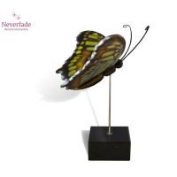 Houten mini-urn vlinder op granieten blokje, Malachiet
