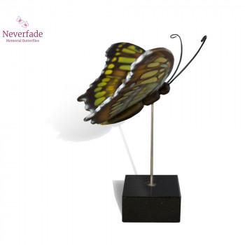 vlinder-mini-urn-malachiet-geel-bruin-zijkant-met-blokje_nf-4054_memento-aan-jou