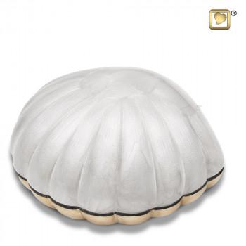wit-parel-kleurige-mini-schelp-urn-shell-pearl_lu-k-641
