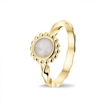 geelgouden-ring-bolletjesrand-ronde-open-ruimte-gedraaide-ring_sy-rg-030-y_sy-memorial-jewelry_memento-aan-jou