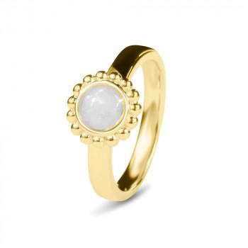 geelgouden-ring-bolletjesrand-ronde-open-ruimte_sy-rg-018-y_sy-memorial-jewelry_memento-aan-jou